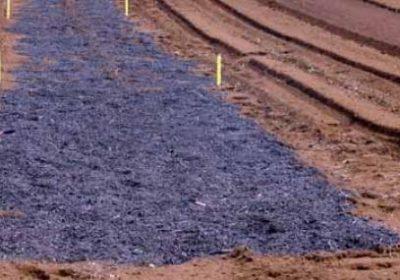 Biochar Sebagai Penambahbaik Tanah